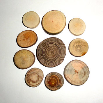 Jewelry supply, jewelry supplier, jewelry supplies wood mix. Jewelry making supplies findings. Natural wood mix slices. Wood for everything.