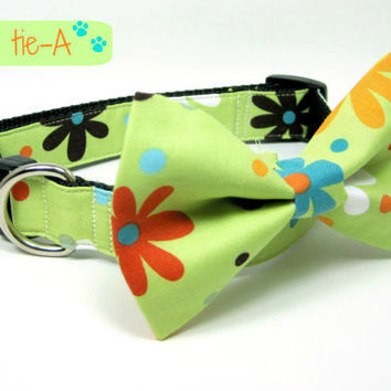 Green Multi Bright  Dog Collars with bow tie set  (Mini,X-Small,Small,Medium ,Large or X-Large Size)- Adjustable