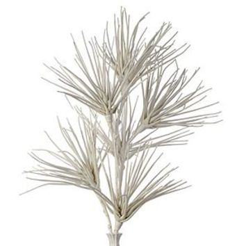 Faux Papyrus Branch - Set of 3 | Stemmed Floral | Floral, Plants, & Trees | Decor | Z Gallerie