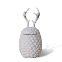 Pineapple Antler Container