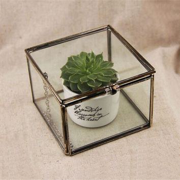Mimi Geometric Glass Terrarium / Cube / Handmade Glass Plant Terrarium / Modern Planter for Indoor Gardening Decoration