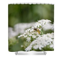 Harvest Shower Curtain for Sale by Ivy Ho