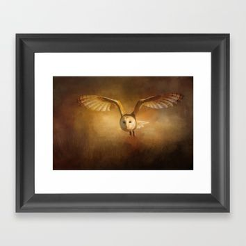 Night Raptor - Barn Owl Framed Art Print by Theresa Campbell D'August Art