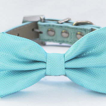 Blue Dog Bow Tie -Bow tie attached to blue leather collar-Something blue, Pet wedding accessory, Beach wedding