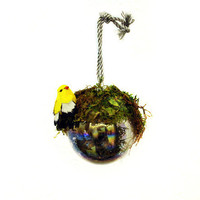 Song Bird & Grass covered Christmas Ornament by MandylopandyArt
