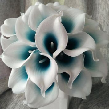 Picasso Calla Lily 10 Stems Mini Calla Lily Bouquet Teal Blue White Calla Lilies Bridal Bouquet Wedding Flowers Centerpieces