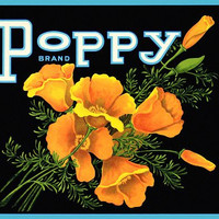 Poppy Flowers label poster