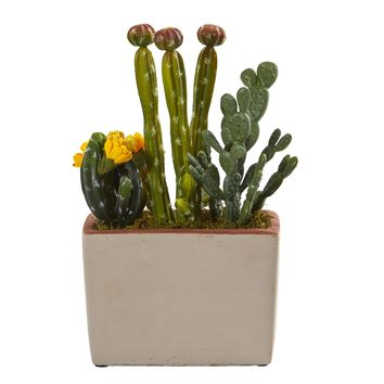 Mixed Cactus Artificial Plant with Decorative Planter