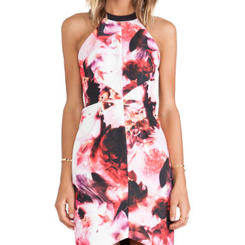keepsake Adore You Dress in Pink