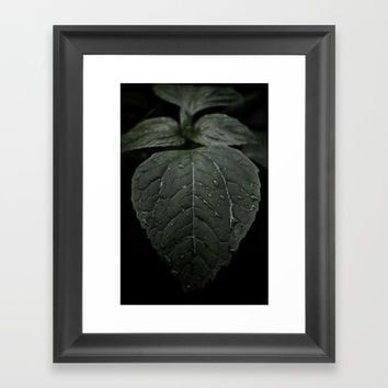 Botanical Still Life Photography Drops On Leaf Framed Art Print by ARTbyJWP