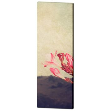 Cottage Chic Canvas - Large Flower Canvas - Tall Canvas - Pink Tan Brown - Mediterranean Canvas - Large Canvas - Wall Art - 20 x 60 Canvas