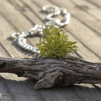 Moss Wood Necklace, Moss Growing from Wood Necklace, Living Plant Jewelry, Eco Friendly, Earth Day, Mothers Day Necklace