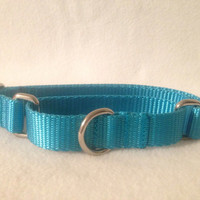 "3/4"" Nylon Martingale or Quick Release Collar"