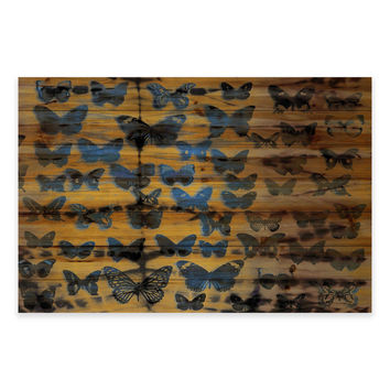 Parvez Taj Moth Colors 45-Inch X 30-Inch Wood Wall Art