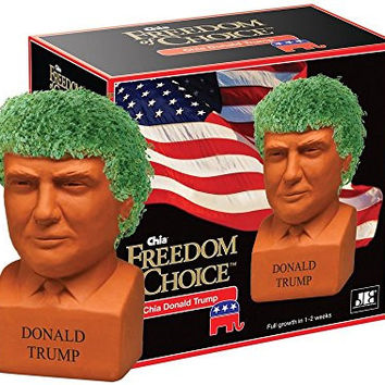Chia Donald Trump Freedom of Choice Pottery Planter