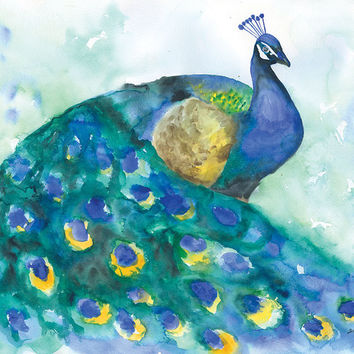 Peacock 2 Watercolor