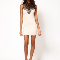 Lipsy Lace Collar Dress at asos.com