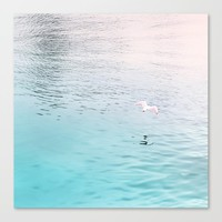 Seagull flying Canvas Print by vivianagonzalez