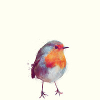 Winter Robin Art Print by Amy Hamilton