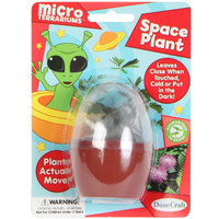 Bulk Dune Craft Micro Terrariums Space Plant Kits at DollarTree.com