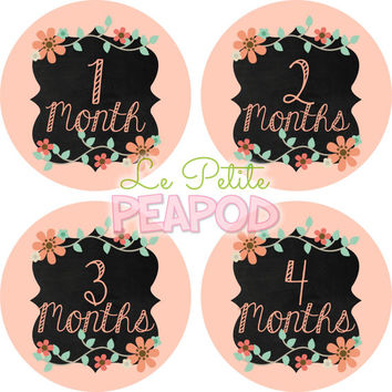 Monthy Baby Shirt Stickers - Peach Floral Shabby Chic Chalkboard Design - Girl Monthly Baby Stickers