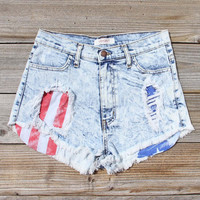 Born Wild Distressed Shorts