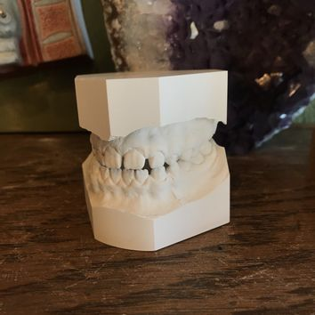 Human Teeth Mold