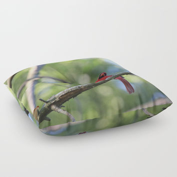 Cardinal IV Floor Pillow by Theresa Campbell D'August Art