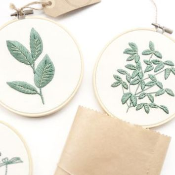 Rubber Plant Embroidery Hoop