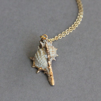 Delicate simple everyday real sea shall pendant gold necklace chain