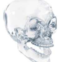 Crystal Skull w/ Movable Jaw