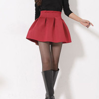 High Waisted Pleated Skater Skirt