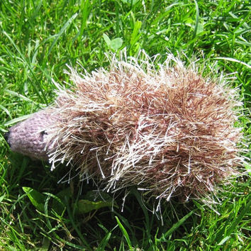 Hand knitted little hedgehog Stuffed wool toy