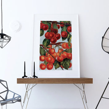 Kitchen Wall Art Cherries Print Kitchen Print Food Photograph Fruit Print Vintage Botanical Art Retro Kitchen Art Kitchen Wall Decor