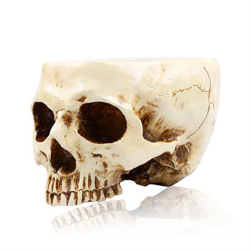 P-Flame Human Skull Flower Pot Multifunctional Storage Tank Decoration Home Decor Crafts High Quality Skull Model Container