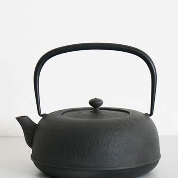 Azmaya Nambu Iron Kettle