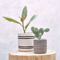 Faja Handcrafted Pot