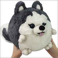Mini Squishable Husky