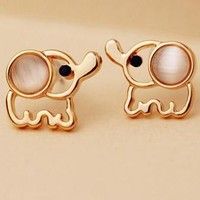 Cute elephant shining golden earrings