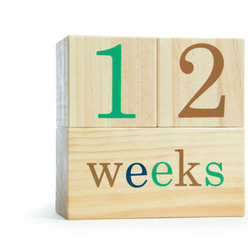BB Blocks Woodlands: Age Photo Blocks, Baby Shower Gift, Newborn Photo Prop, Baby Gift for boys