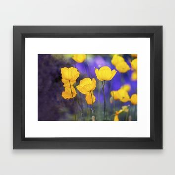 Poppy Framed Art Print by Kristopher Winter