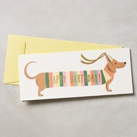 Rifle Paper Co. Dachshund Happy Birthday Card in Yellow Size: One Size Books