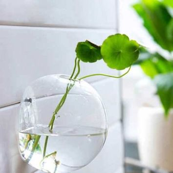 Hanging Flower Pot Glass Ball Vase Terrarium Wall Fish Tank Aquarium Container 10/12/15CM Homw Decor