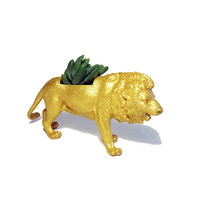 Up-cycled Gold Lion Animal Planter - With Succulent Plant