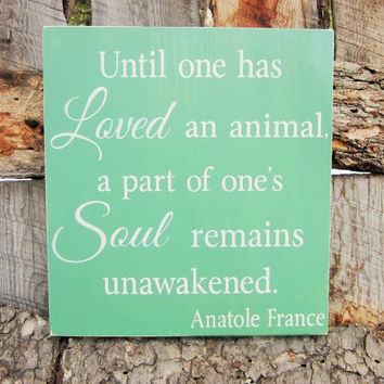 Pet Sign Animal Sign Adoption Sign Animal Love Sign Wall Decor Rainbow Bridge Fur Baby Sign Best Friend Sign Made In Montana Pet Lover