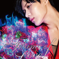 YESASIA: Flame of Love (ALBUM+DVD) (First Press Limited Edition) (Japan Version) CD - Tae Min (SHINee) - Japanese Music - Free Shipping - North America Site