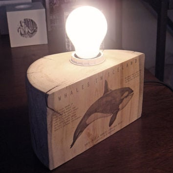 Driftwood table lamp with Killer whale illustration. Wood table lamp.