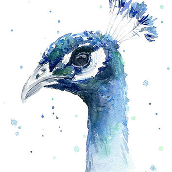 Peacock Painting Watercolor Print, Bird Art, Animal Watercolor, Peacock Artwork, Peacock Print, Giclee Art Print