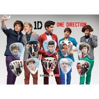 Amazon.com: One Direction Signed Autographed 500 Limited Edition Guitar Pick Set Display: Everything Else