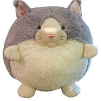 Squishable Kitten